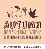 hand drawn autumn illustration... | Shutterstock .eps vector #1152226868
