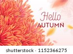 hello autumn floral design.... | Shutterstock .eps vector #1152366275