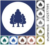 deciduous forest icon. vector... | Shutterstock .eps vector #1152577595