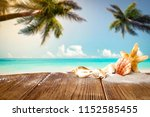 table background and beach... | Shutterstock . vector #1152585455