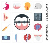 set of 13 simple editable icons ... | Shutterstock .eps vector #1152600245