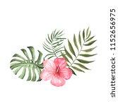 set of watercolor hand painted...   Shutterstock . vector #1152656975