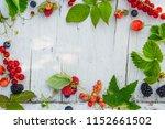assortment of summer garden...   Shutterstock . vector #1152661502