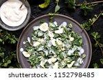 dish of purslane. potulak... | Shutterstock . vector #1152798485