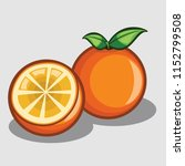 orange fruit vector illustration | Shutterstock .eps vector #1152799508