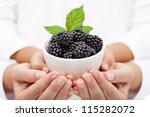 Adult and child hands holding blackberries in a bowl - shallow depth - stock photo