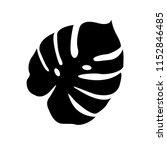 tropical jungle monstera leav... | Shutterstock .eps vector #1152846485
