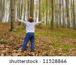 boy in the woods | Shutterstock . vector #11528866