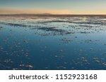 sunset in the salar de uyuni ... | Shutterstock . vector #1152923168
