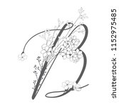 vector hand drawn floral b... | Shutterstock .eps vector #1152975485