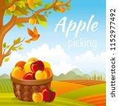 vector illustration. fall... | Shutterstock .eps vector #1152977492