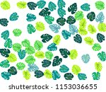 philodendron or monstera plant. ...   Shutterstock .eps vector #1153036655