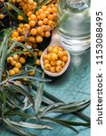 sea buckthorn oil and berries... | Shutterstock . vector #1153088495