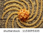 color italian pasta with spiral ... | Shutterstock . vector #1153095335