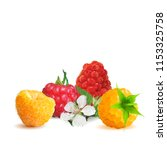 fresh  nutritious and tasty... | Shutterstock .eps vector #1153325758