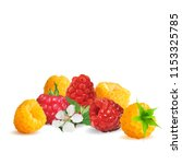 fresh  nutritious and tasty... | Shutterstock .eps vector #1153325785