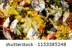art graphic and watercolor... | Shutterstock . vector #1153385248