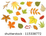 Colorful autumnal leaves and plants set isolated on white background for seasonal design, such a logo template. Jpeg version also available in gallery - stock vector