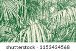 tropical abstract background...   Shutterstock .eps vector #1153434568