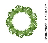 philodendron monstera leaf... | Shutterstock .eps vector #1153485475