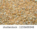 pebbles on the beach at the sea ... | Shutterstock . vector #1153600348