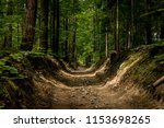 path in forest.  | Shutterstock . vector #1153698265