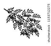silhouette of a rowan branch on ... | Shutterstock .eps vector #1153712275
