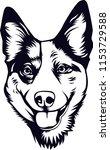 australian cattle dog breed...   Shutterstock .eps vector #1153729588