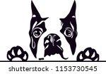 Boston Terrier Dog Breed Love...