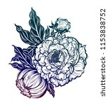 peony flower with leaves and... | Shutterstock .eps vector #1153838752