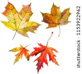 maple autumn leaves watercolor... | Shutterstock . vector #1153922962