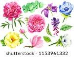 beautiful set of flowers ... | Shutterstock . vector #1153961332