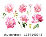 Hand Painted Flowers. Set Of...