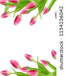 spring flowers tulips isolated... | Shutterstock . vector #1154236042