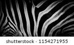 zebra print  animal skin  tiger ... | Shutterstock . vector #1154271955