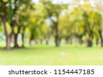 abstract blur lawn green trees... | Shutterstock . vector #1154447185