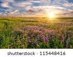 Summer Landscape With Flower...