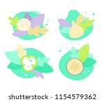 vector set of onion  cucumber...