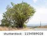 travel to natural places.... | Shutterstock . vector #1154589028