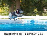 Stock photo australian cattle dog jumping in pool of water queensland dog breed 1154604232