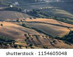 panoramic view of olive groves... | Shutterstock . vector #1154605048