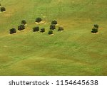 view of olive groves on... | Shutterstock . vector #1154645638