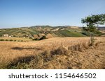panoramic view of olive groves... | Shutterstock . vector #1154646502