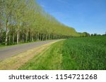 yermenonville  france   may 6... | Shutterstock . vector #1154721268