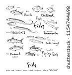 hand drawn food ingredients  ... | Shutterstock .eps vector #1154744698