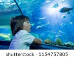 little boy  kid watching the... | Shutterstock . vector #1154757805