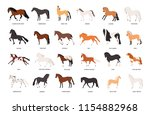collection of horses of various ... | Shutterstock .eps vector #1154882968