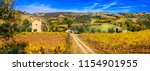 golden vineyards. beautiful... | Shutterstock . vector #1154901955