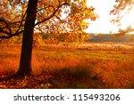 autumn landscape | Shutterstock . vector #115493206