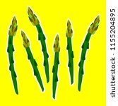 pattern  asparagus on the ... | Shutterstock .eps vector #1155204895